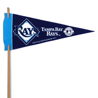 Tampa Bay Rays Mini Felt Pennants