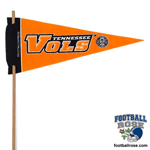 Tennessee Vols Mini Felt Pennants