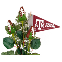 Texas A&M Aggies Gifts and Accessories