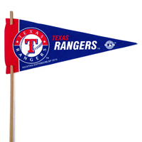 Texas Rangers Mini Felt Pennants
