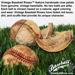 Vintage Baseball Rose Mini-Thumbnail