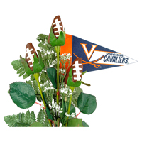 Virginia Cavaliers Gifts and Accessories
