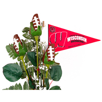 Wisconsin Badgers Gifts and Accessories