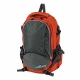 Fowler Fins Backpack