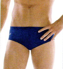 Speedo Solid Brief - Adult THUMBNAIL