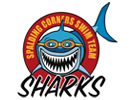 Spalding Corners Sharks Swim Team
