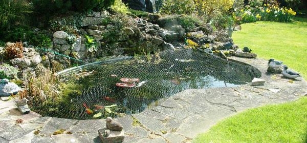 Protective pond netting for leaves predators for water for Garden pool netting