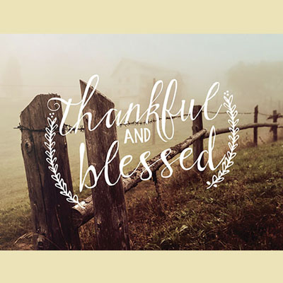 Light Box Insert - Thankful and Blessed (Fence Line)