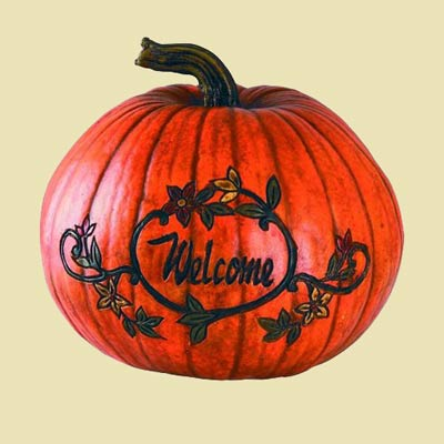 Pumpkin - Welcome