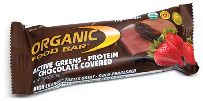 Active Greens Protein Organic Vegan Food Bar Chocolate Covered