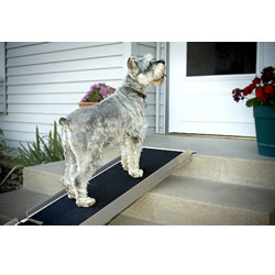 Pet Folding Ramp LARGE