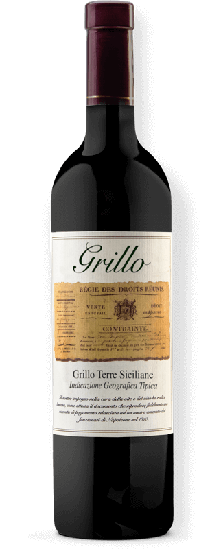 Grillo - Bianco Terre Siciliane IGT THUMBNAIL