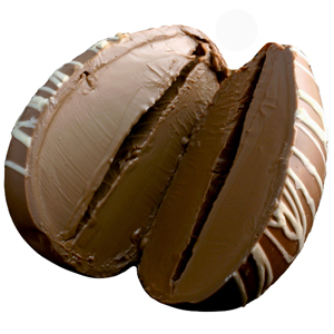Double Milk Chocolate Truffle Egg (8oz) MAIN