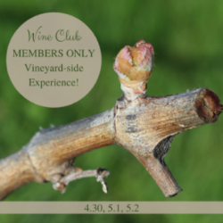 Club Member-only Experiences