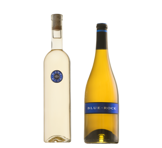 Virtual Tasting Package - White Duo LARGE