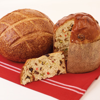 NEW!! Sourdough & Panettone Pairing #996 MAIN
