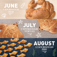 New! Mini Summer Seasonal Bread Club #973_MAIN