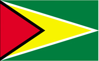 Guyana Flag MAIN