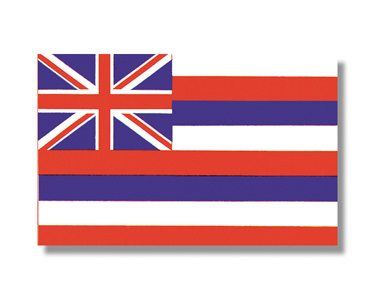<big>Hawaii State Flag</font></big>