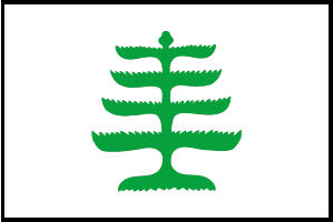 <big>Pine Tree  Flag</font></big> THUMBNAIL