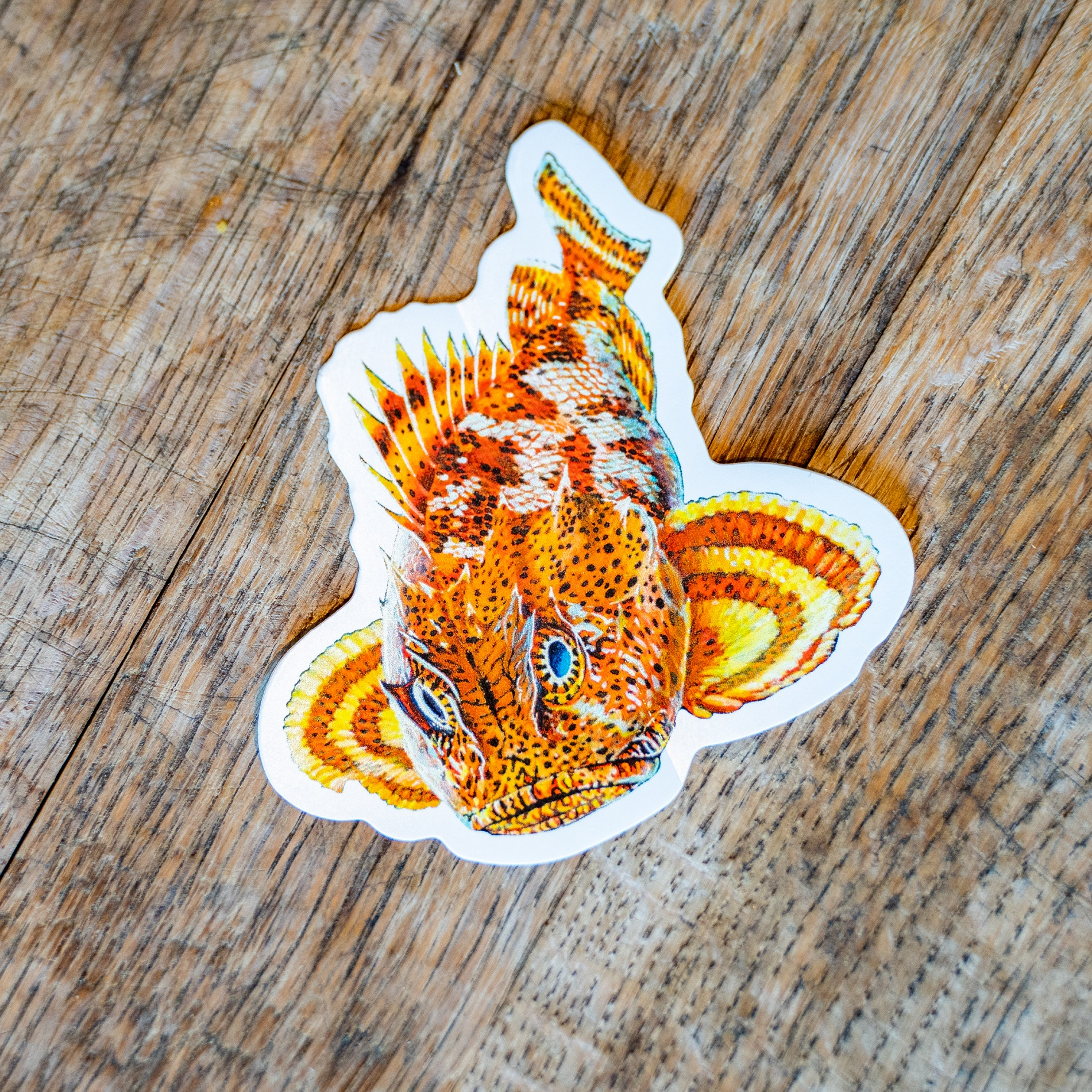 Ballast Point Die Cut Sculpin Sticker THUMBNAIL