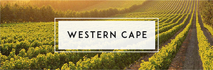 Buy Western Cape Wine | Cape Ardor
