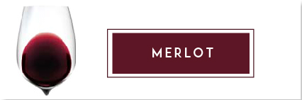 Buy Merlot Wine | Cape Ardor