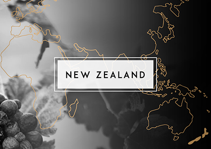 Shop New Zealand Wine | Cape Ardor