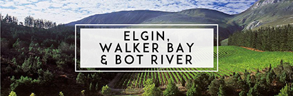 Buy Wine Elgin, Walker Bay and Bot River Wine | Cape Ardor