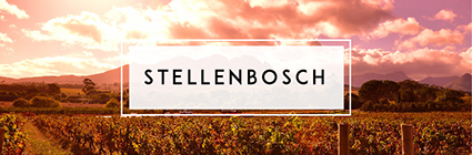 Buy Stellenbosch Wine | Cape Ardor