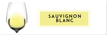 Buy Sauvignon Blanc Wine | Cape Ardor
