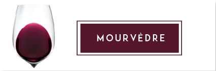 Buy Mourvedre Wine | Cape Ardor