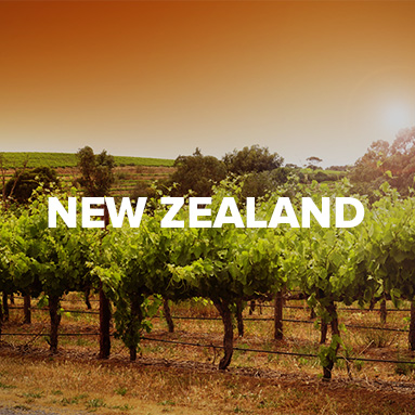 Cape Ardor :: South African Wine Specialists :: Shop New Zealand