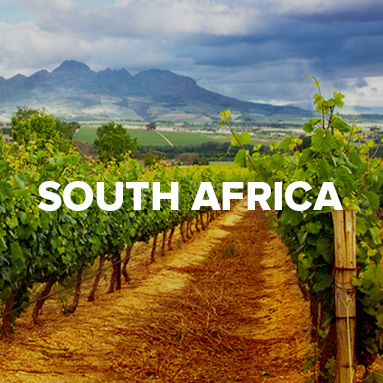 Cape Ardor :: South African Wine Specialists :: Shop South African Wine