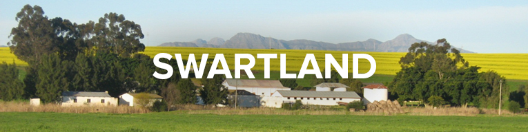 Buy Wine From Swartland, South Africa at Cape Ardor