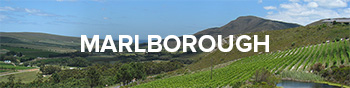 Buy Wine From Marlborough, New Zealand at Cape Ardor