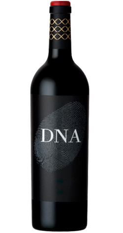 Vergelegen - 'DNA' Bordeaux Style Blend, Stellenbosch - 2012 (750ml) :: South African Wine Specialists