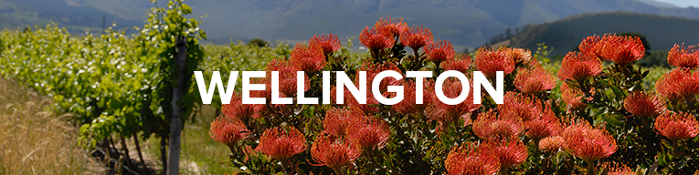 Buy Wine From Wellington, South Africa at Cape Ardor