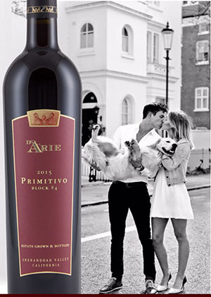 February 2020 Value Wine - 2015  Primitivo 6 Bottle Set LARGE