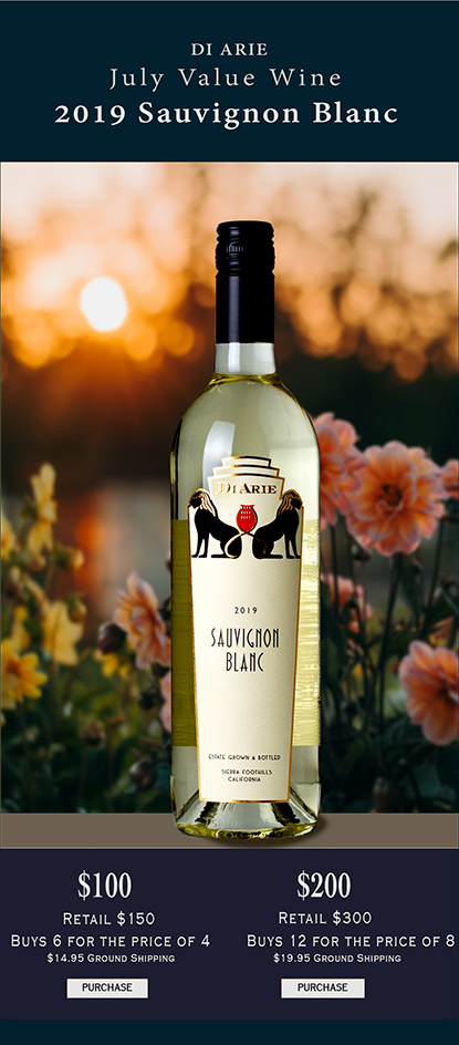 July  2020 Value Wine  2019 Sauvignon Blanc  12 Bottle Set LARGE