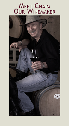 Meet Chaim our Wine Maker