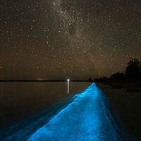 Bioluminescence Kayak Tour on Tomales Bay