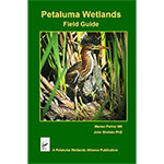 Petaluma Wetlands Field Guide THUMBNAIL