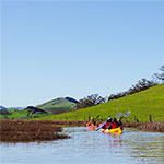 Petaluma Marsh Kayak Tour THUMBNAIL