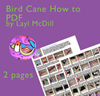 Bird Cane PDF Tutorial THUMBNAIL