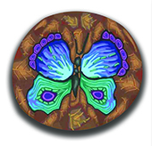 Blue Butterfly with Brown background MAIN