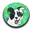 Border Collie Polymer Clay Silly Milly |Layl's Silly Milly Art - Clay Silly Millys THUMBNAIL