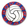 Volleyball Polymer Clay Magnet or Pin