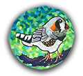 Zebra Finch Polymer Clay Magnet or Pin THUMBNAIL