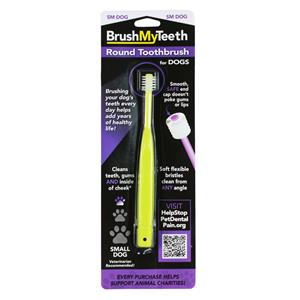 BrushMyTeeth Small Dog Round Toothbrush MAIN